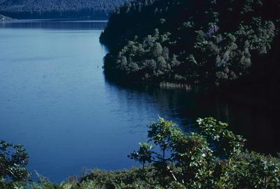Slide, Green Lake, Rotorua