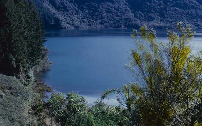 Slide, Blue Lake, Rotorua