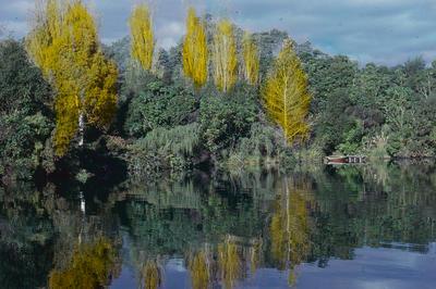 Slide, Lake Tarawera