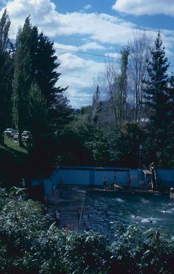 Slide, Opal Springs, Matamata