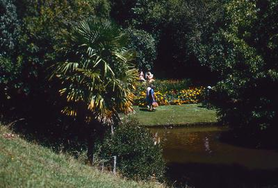 Slide, Gordon's Gardens, Waihi