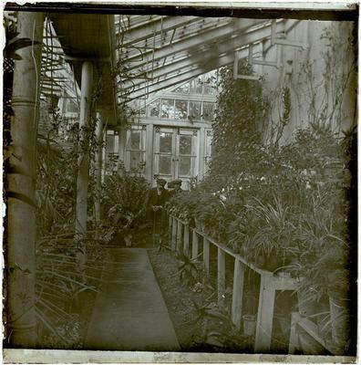 Lantern Slide, Glasshouse