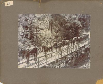 Print, Photographic, Horses hauling logs