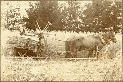 Print, Photographic, Pioneer, Charles Fletcher