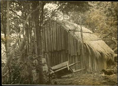 Print, Photographic, Canoe Builder's Whare