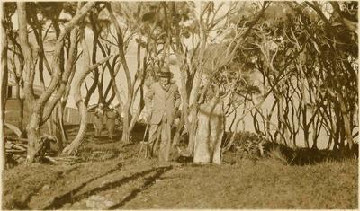 Print, Photographic, Anchor Stone, Burial Place of Tainui Canoe, Kawhia