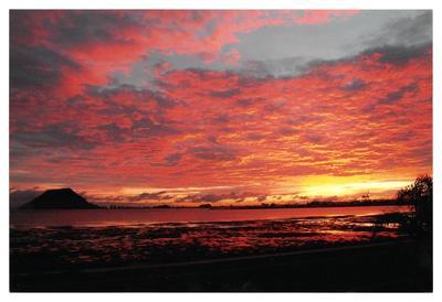 Print, Photographic, Mount Maunganui
