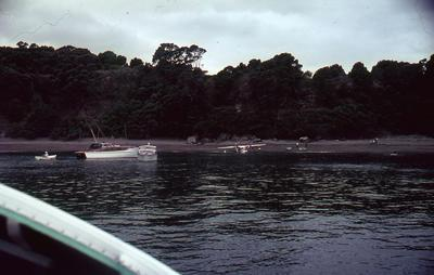 Slide, Mayor Island