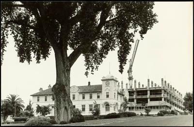 Print, Photographic, New Government Office, Tauranga