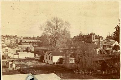Print, Photographic, Tauranga Township
