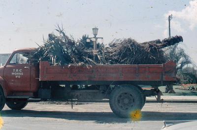 Slide, Tauranga Borough Council Truck