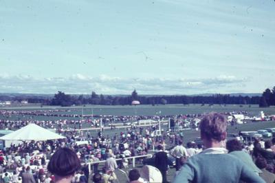 Slide, Tauranga Racecourse