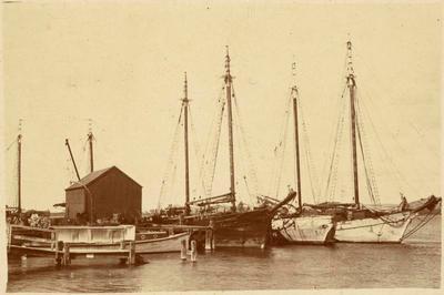 Print, Photographic, Sailing Ships, Town Wharf, Tauranga
