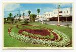 Postcard, The Strand Gardens, Tauranga